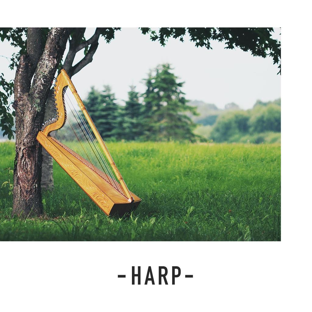 Image of ハープ