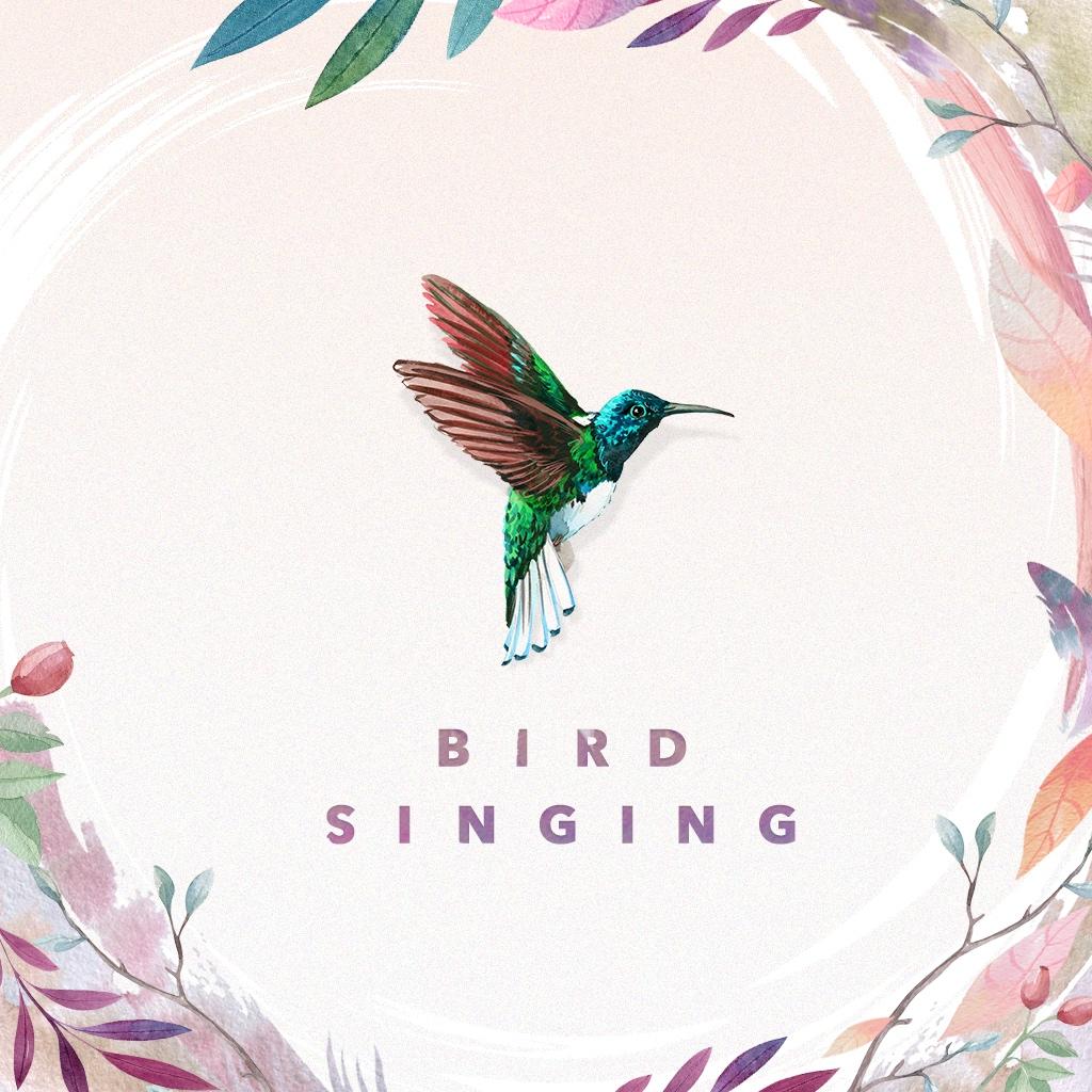 Image of 鳥のさえずり