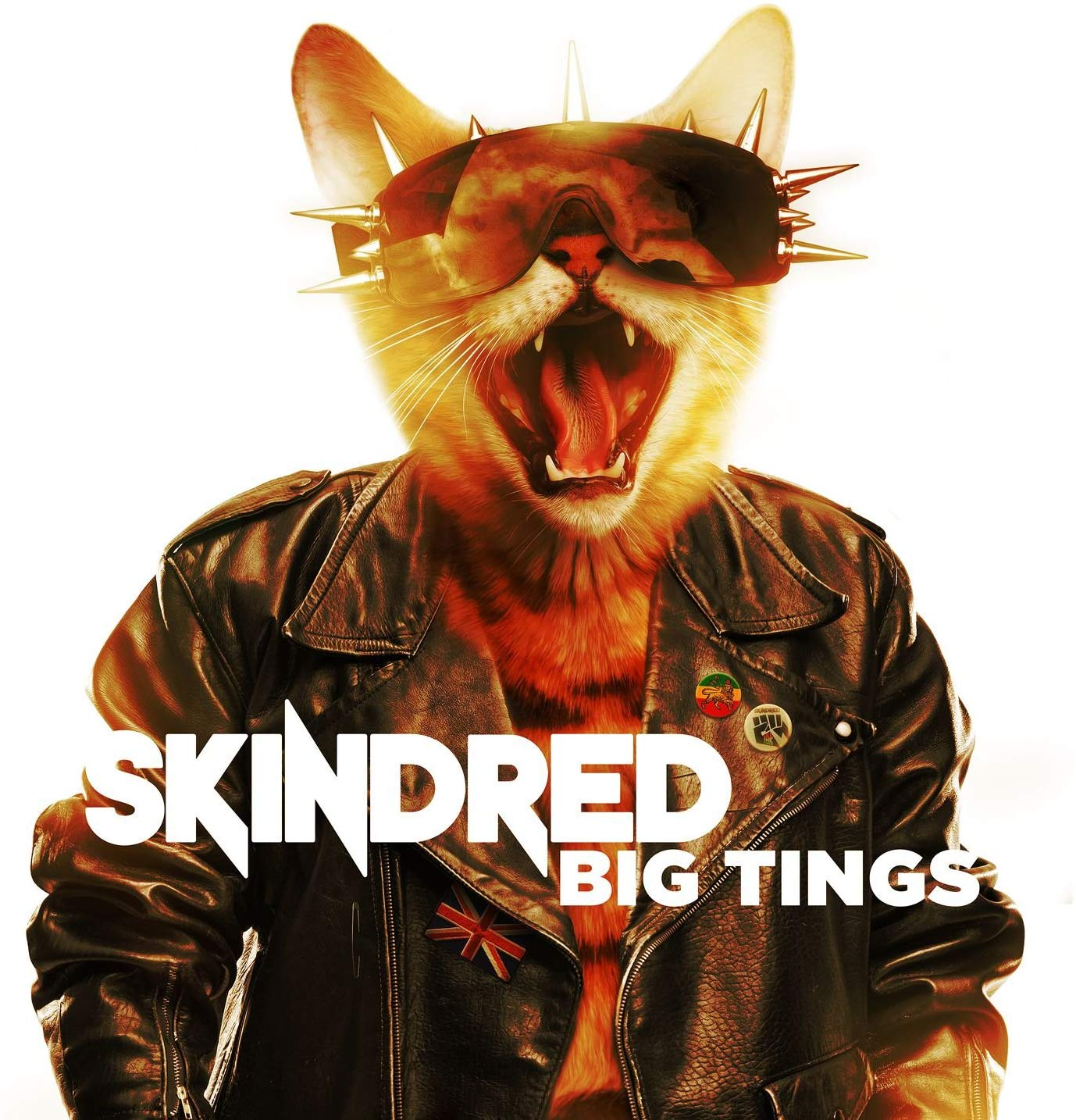 Image of Big Tings / Skindred