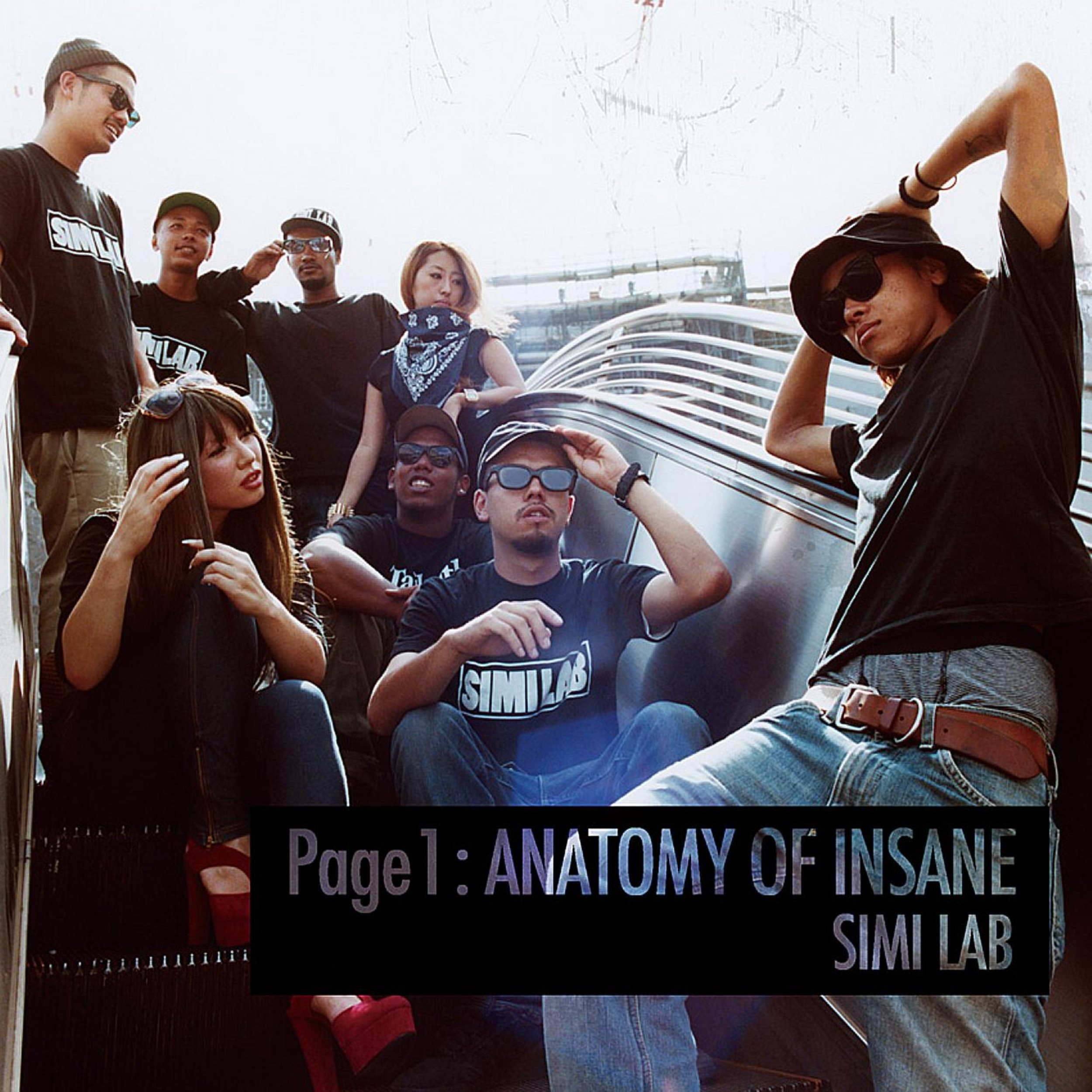 Image of Page 1 : ANATOMY OF INSANE / SIMI LAB