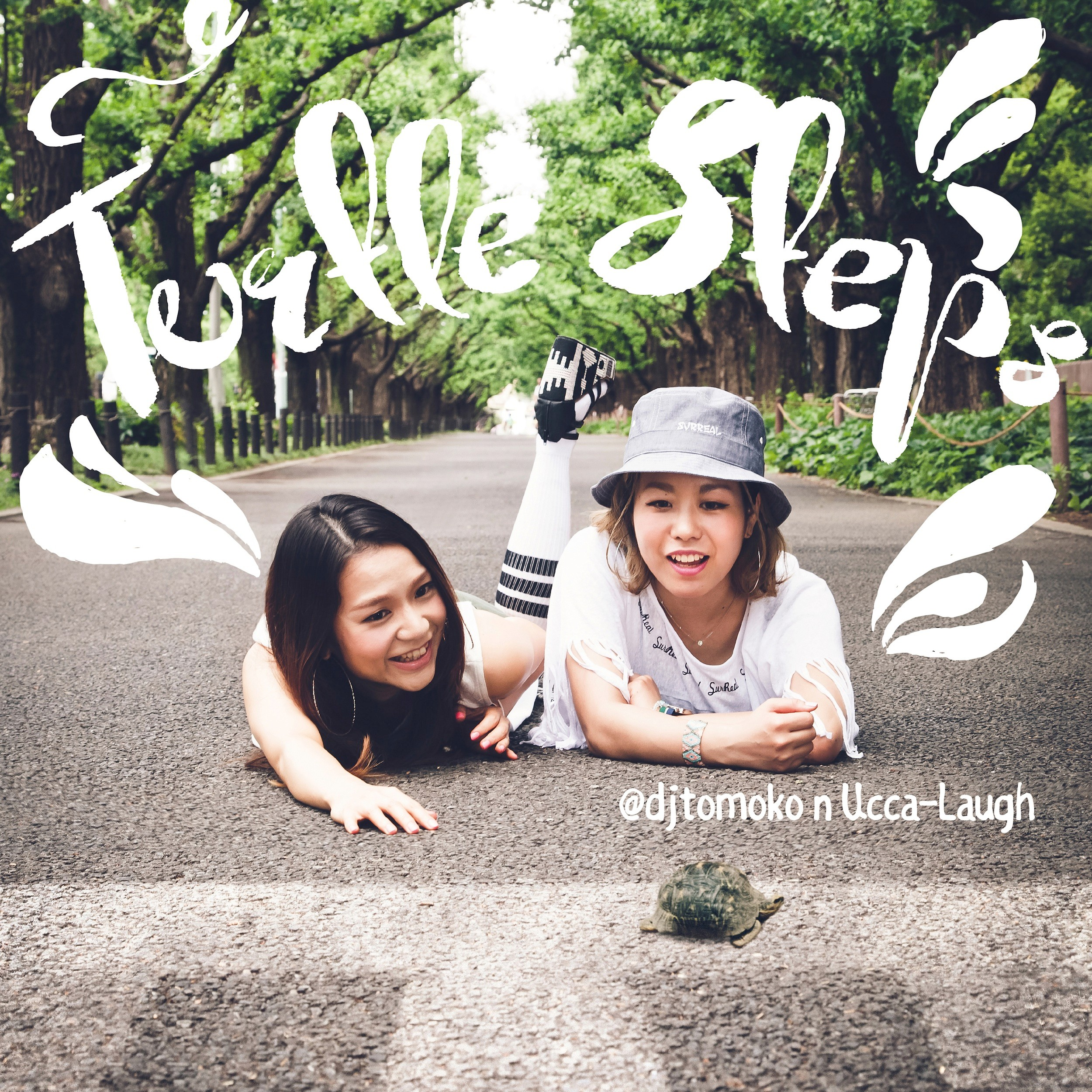 Image of Turtle Steps / @djtomoko n Ucca-Laugh
