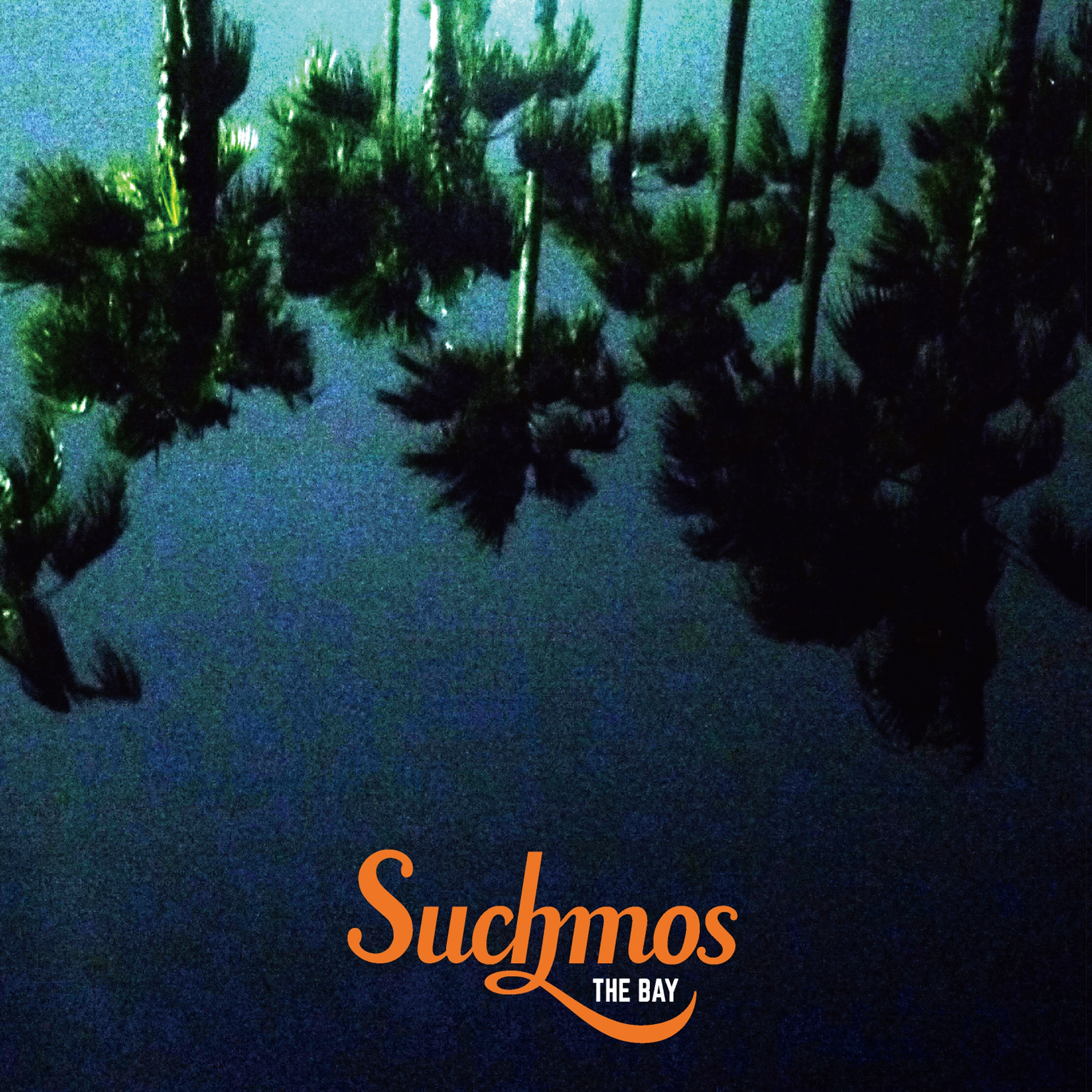 Image of THE BAY / Suchmos