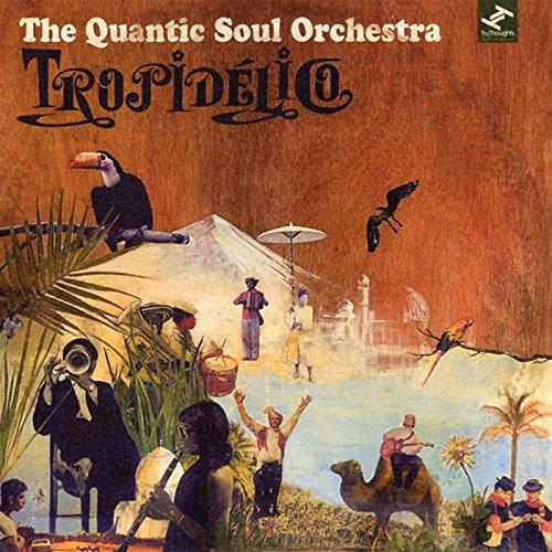 Image of Tropidelico / Quantic Soul Orchestra